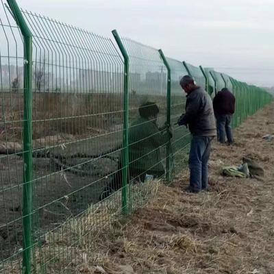 圈地护栏网图片--1