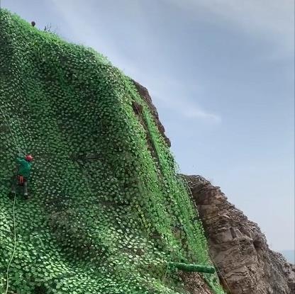 矿山复绿网
